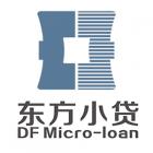 广德东方小额贷款股份有限公司
